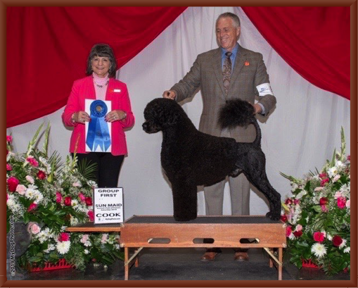 Bernie Wins the Working Group at Fresno in January 2019 with Handler Bill McFadden.